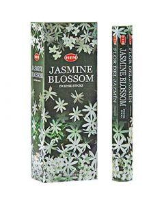 Hem Jasmine Blossom Hexa