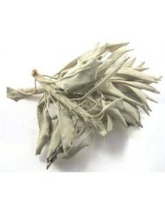 White sage leaves 500 gram