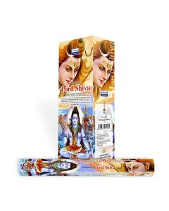 Darshan Lord Shiva hexa