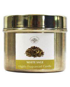 Green Tree White Sage Candle 150 Grams