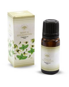 Green Tree Fragrance Oil Mint & Eucalyptus 10 ml