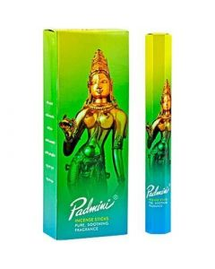 Padmini Hexa Incense