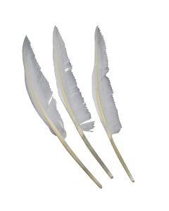 Zwaan blade - 28 -32 cm - wit