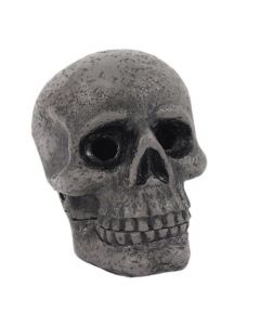 Skull Incense Cone Holder.