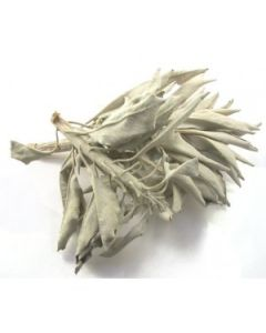 White sage leaves 500 gram