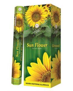 Flute Sun Flower Hexa