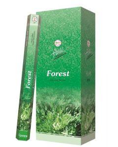 Flute Forest Hexa