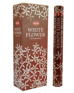 Hem White Flower Hexa