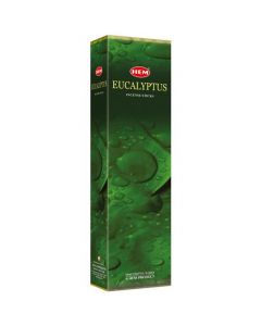 Hem Eucalyptus Tall Hexa