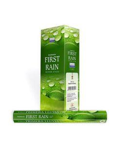 Darshan First Rain Hexa