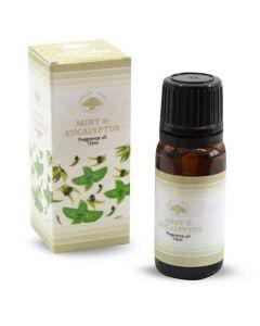 Green Tree Fragrance Oil Mint & Eucalyptus 10 ml