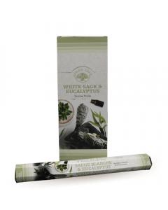 Green Tree White Sage & Eucalyptus Incense