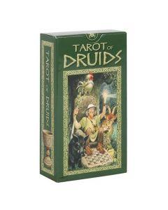 Tarot of Druids Tarot Cards